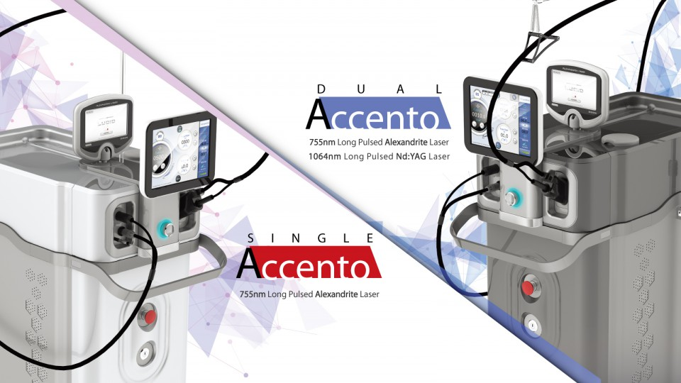 Dual Accento Phoenix Group International Ltd